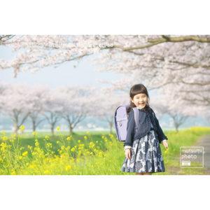 桜・菜の花・ランドセル