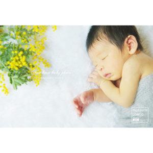 春の新生児フォト