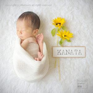 季節の花や思い出の小物と新生児